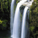 Whangarei-Falls-waterfall
