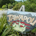 Tawapou Coastal Natives