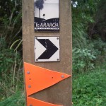 Te Araroa – The Long Pathway