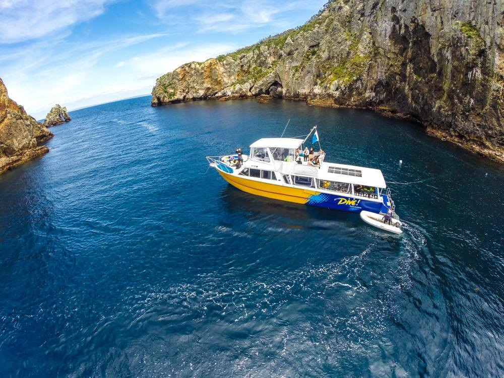 Calypso in South Harbour, Poor Knights Islands; Photo by Jack Austin: Dive! Tutukaka
