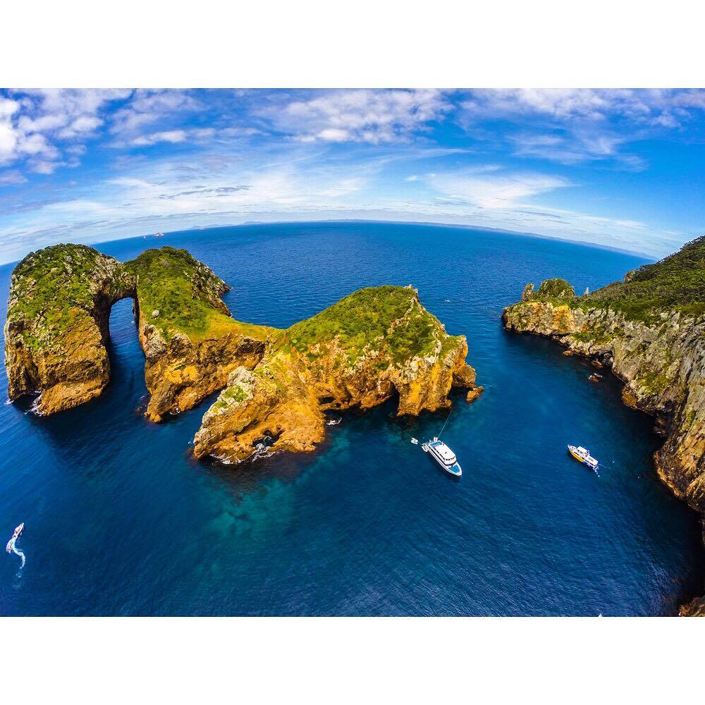 Calypso and Perfect Day in South Harbour, Poor Knights Islands; Photo by Jack Austin: Dive! Tutukaka